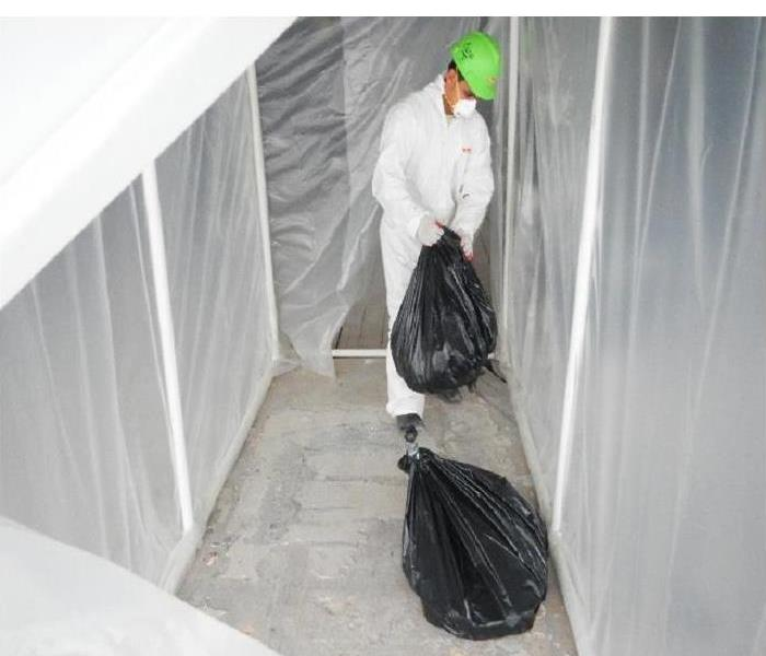 Mold Removal in Palos Heights