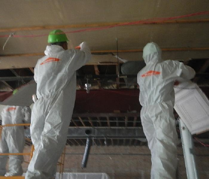 Mold Remediation in Palos Park
