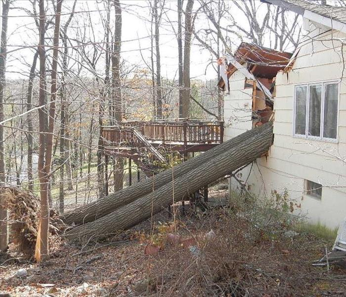 Storm Damage Cleanup in Orland Park