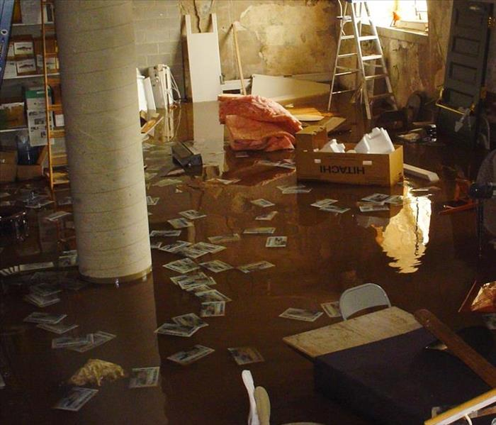 Water Damage Dealing With Water Damage Caused by Sewage in Oak Forest