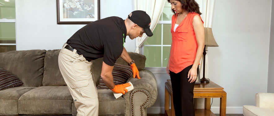 Orland Park, IL carpet upholstery cleaning