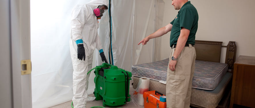 Orland Park, IL mold removal process